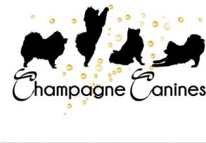 Champagne Canines Logo